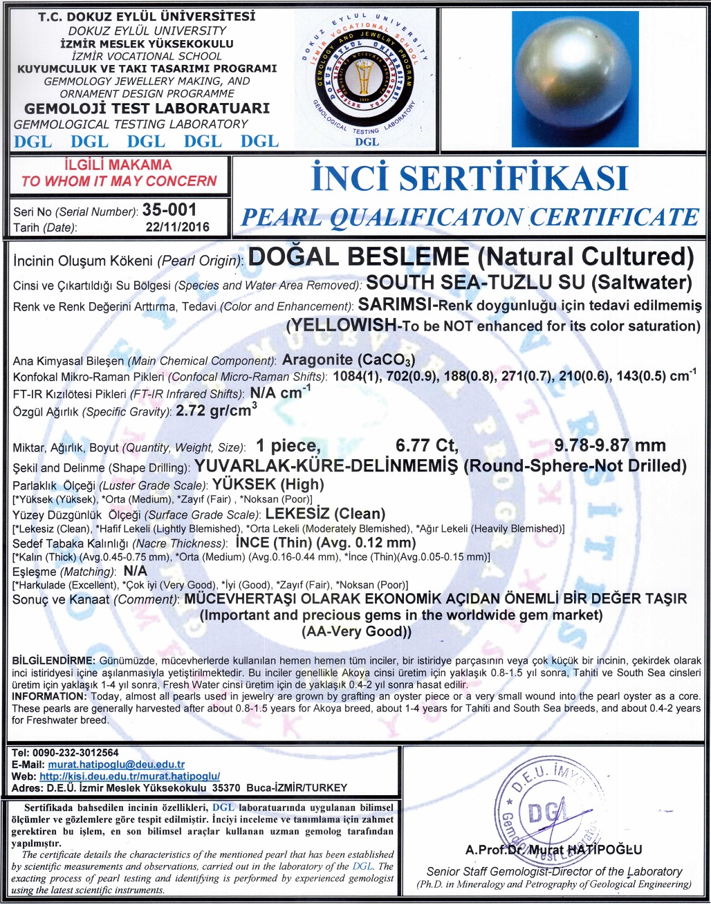 South Sea university certificate